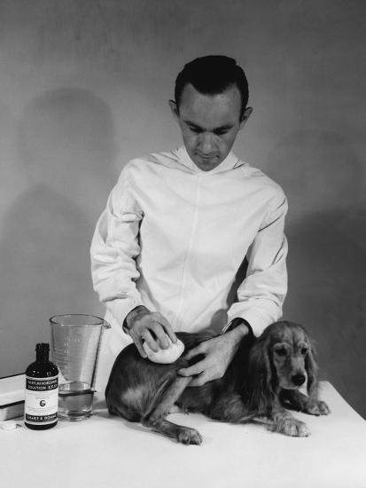 Vet and Dog-Edwin Levick-Photographic Print