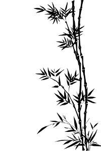 Bamboo by Veyronik