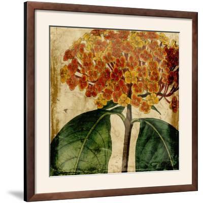 Vibrant Floral I-Vision Studio-Framed Photographic Print