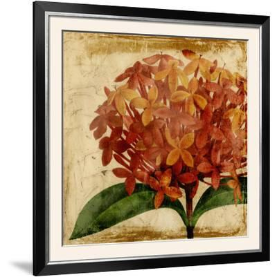 Vibrant Floral III-Vision Studio-Framed Photographic Print