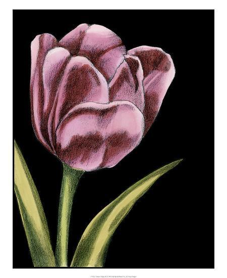 Vibrant Tulips III-Ethan Harper-Giclee Print