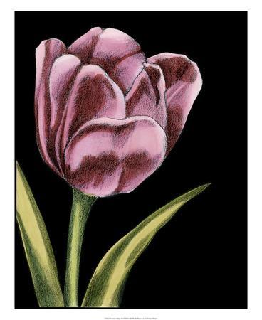 https://imgc.artprintimages.com/img/print/vibrant-tulips-iii_u-l-f5bw7d0.jpg?p=0
