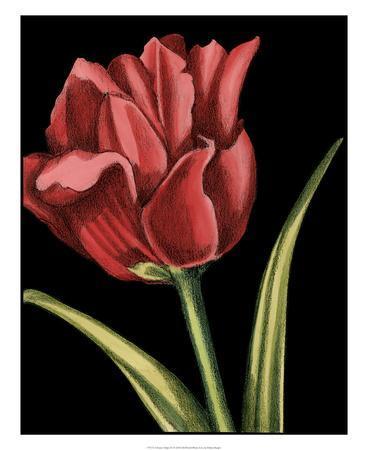 https://imgc.artprintimages.com/img/print/vibrant-tulips-iv_u-l-f5bw7e0.jpg?p=0