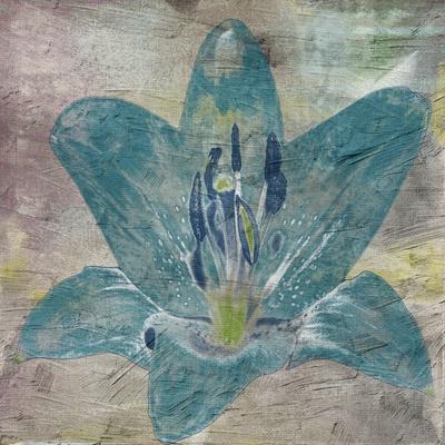 https://imgc.artprintimages.com/img/print/vibrany-lily-2_u-l-q1g7y3s0.jpg?p=0
