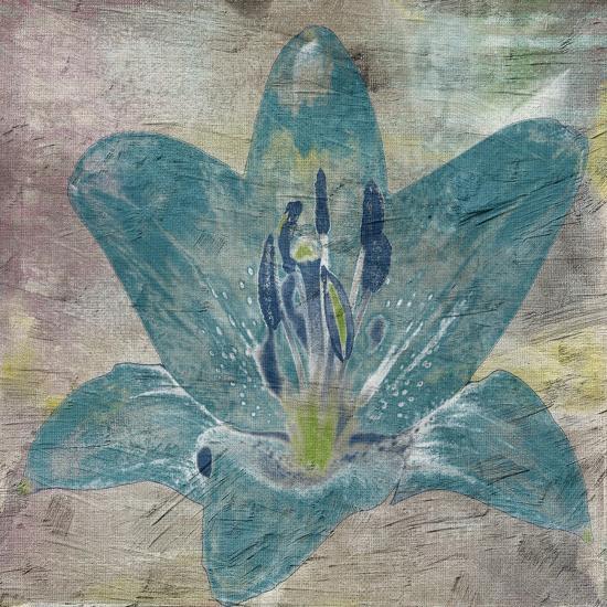 Vibrany Lily 2-Sheldon Lewis-Art Print