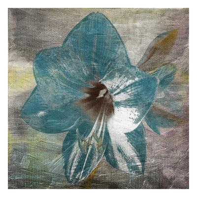 Vibrany Lily-Sheldon Lewis-Art Print
