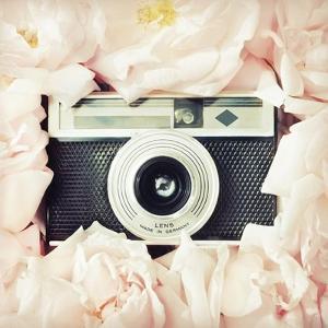 Circle of Roses by Vicki Dvorak