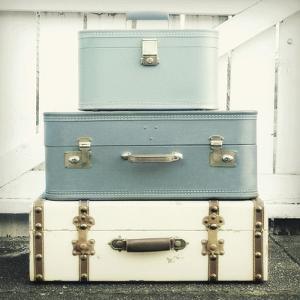 Journey in Blue by Vicki Dvorak