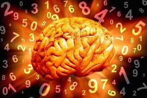Brain, Conceptual Artwork by Victor De Schwanberg