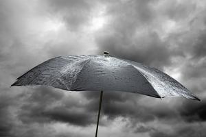 Wet Umbrella, Composite Image by Victor De Schwanberg