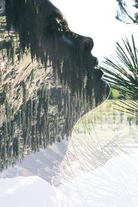 Double Exposure Portrait of Attractive Lady Combined with Mountainous Landscape by Victor Tongdee