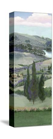 Lavender Tuscany IV