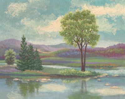 River Scape I by Victor Valla