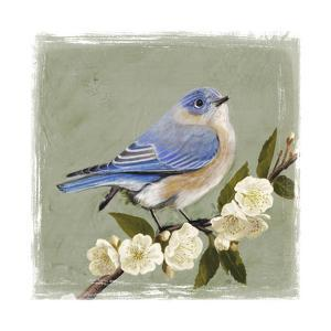 Bluebird Branch I by Victoria Borges