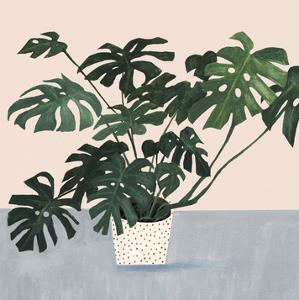 Houseplant III by Victoria Borges