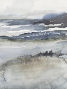 Neutral Salt Spray II by Victoria Borges