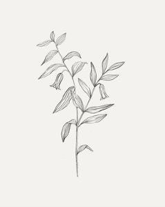 Wild Foliage Sketch IV by Victoria Borges