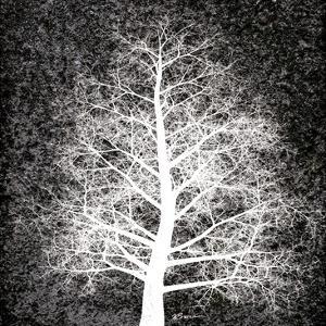 Nordic Spirit 4 by Victoria Brown