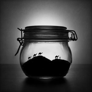 A jar of sugar sand by Victoria Ivanova