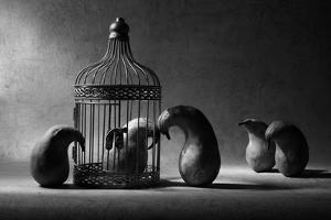 The Political Prisoner by Victoria Ivanova