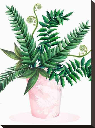Leafy Fern Green 2