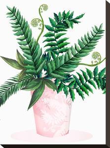 Leafy Fern Green 2 by Victoria Nelson
