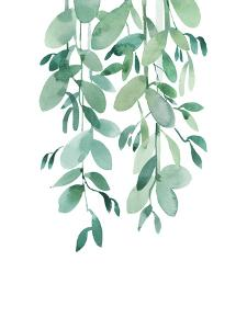 Tropical Leaf Eucalyptus by Victoria Nelson