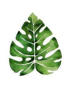 Tropical Leaf Monstera by Victoria Nelson