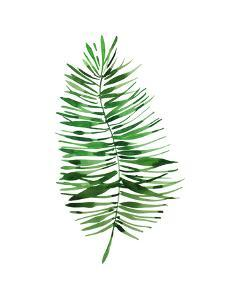Tropical Leaf Palm by Victoria Nelson