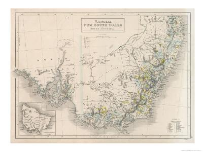 Victoria New South Wales South Australia-W^ Hughes-Giclee Print