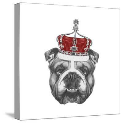 Original Drawing of English Bulldog with Crown. Isolated on Colored Background