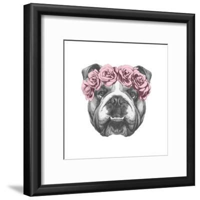 Original Drawing of English Bulldog with Floral Head Wreath. Isolated on White Background.
