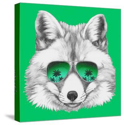 Original Drawing of Fox with Mirror Glasses. Isolated on Colored Background