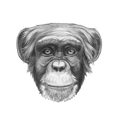 Original Drawing of Monkey. Isolated on White Background.