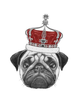 Original Drawing of Pug Dog with Crown. Isolated on White Background by victoria_novak
