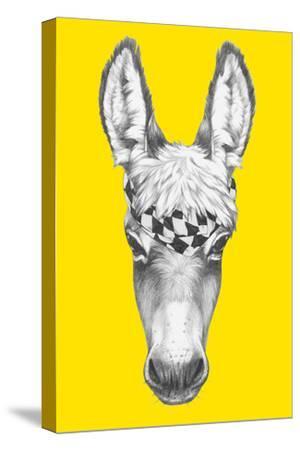 Portrait of Donkey with Scarf. Hand Drawn Illustration.