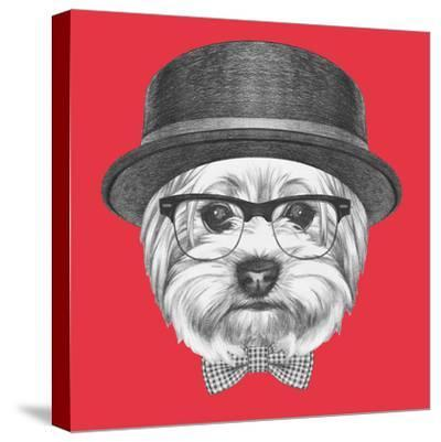 Portrait of Hipster Dog. Yorkshire Terrier with Sunglasses,Hat and Bow Tie. Hand Drawn Illustration