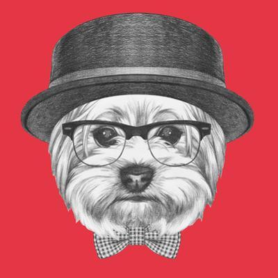 Portrait of Hipster Dog. Yorkshire Terrier with Sunglasses,Hat and Bow Tie. Hand Drawn Illustration by victoria_novak