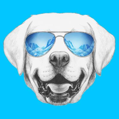 Portrait of Labrador with Mirror Sunglasses. Hand Drawn Illustration. by victoria_novak