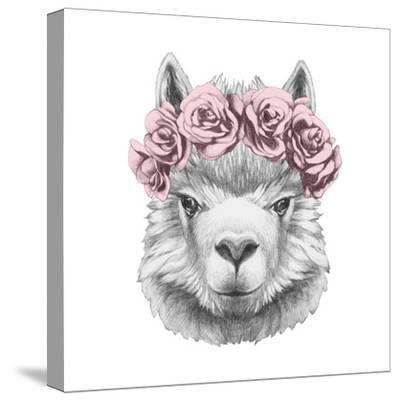 Portrait of Lama with Floral Head Wreath. Hand Drawn Illustration.