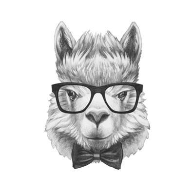 Portrait of Lama with Glasses and Bow Tie. Hand Drawn Illustration.