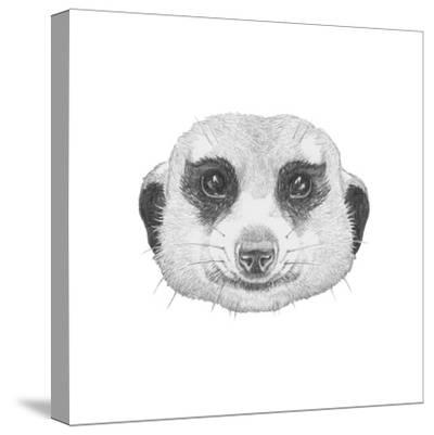 Portrait of Mongoose with Mirror Sunglasses. Hand Drawn Illustration.