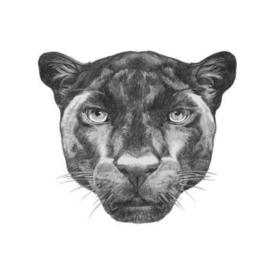 Portrait of Panther. Hand Drawn Illustration.