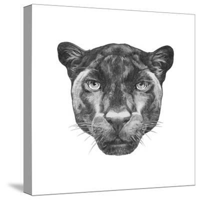 Portrait of Panther. Hand Drawn Illustration.