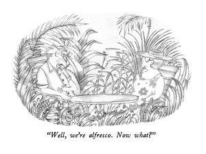 """Well, we're alfresco.  Now what?"" - New Yorker Cartoon by Victoria Roberts"