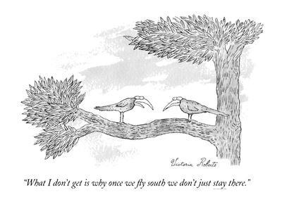 """What I don't get is why once we fly south we don't just stay there."" - New Yorker Cartoon"