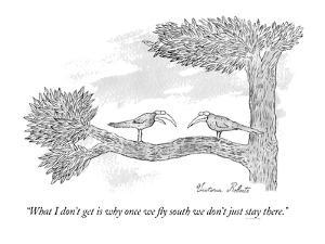 """""""What I don't get is why once we fly south we don't just stay there."""" - New Yorker Cartoon by Victoria Roberts"""