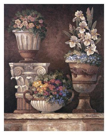 Victorian Blossoms II-James Lee-Art Print