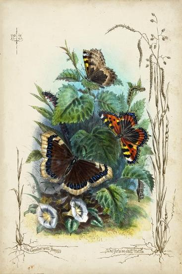 Victorian Butterfly Garden IV-Vision Studio-Art Print