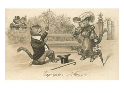 Victorian Cat Proposing, Expression d'Amour--Art Print